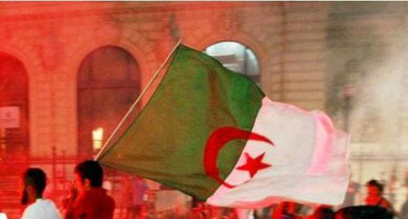 Cela se passe au quartier Belouizdad d'Alger, des Algérois fêtent l'attentat contre le siège de Charlie Hebdo