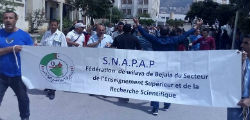 Marche du SNAPAP