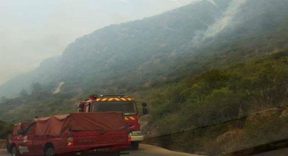 Les incendies à l'origine de la canicule qui sévit à Vgayet