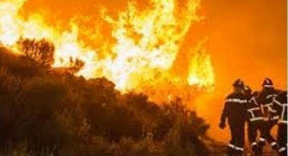 Feux de forêt et chaleur: C'est l'enfer à Vgayet