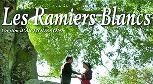 « Les ramiers blancs » : Nouveau film en tamazight d'Ali Mouzaoui